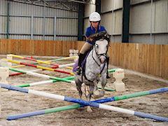 horse riding melbourne eastern suburbs
